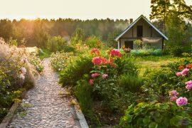Ogród gotowy na hamak