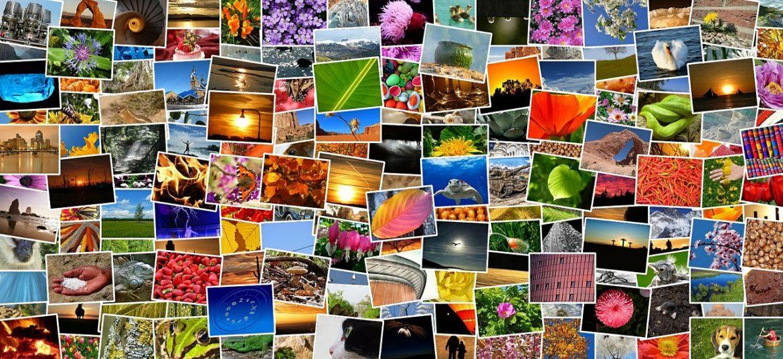 Dużo kolorowych zdjęć