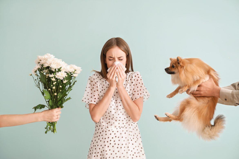 alergia pies kwiaty