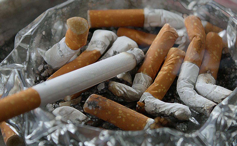 wypalone papierosy